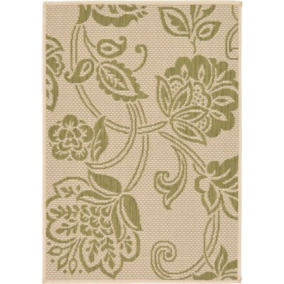 Malinda Light Green Outdoor Area Rug Rug Size: Rectangle 22 x 3