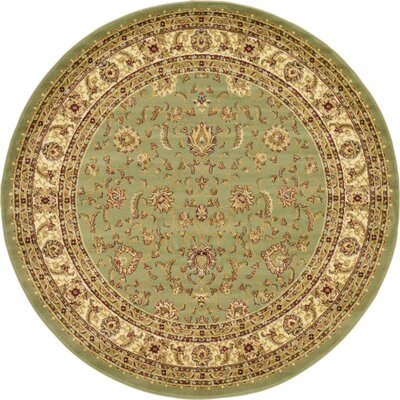 Niles Light Green Area Rug Rug Size: Round 6
