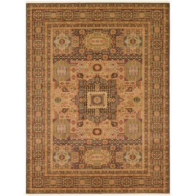 Laurelwood Brown Area Rug Rug Size: Rectangle 9 x 12