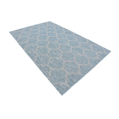 Stanton Aquamarine Outdoor Area Rug Rug Size: Rectangle 5 x 8