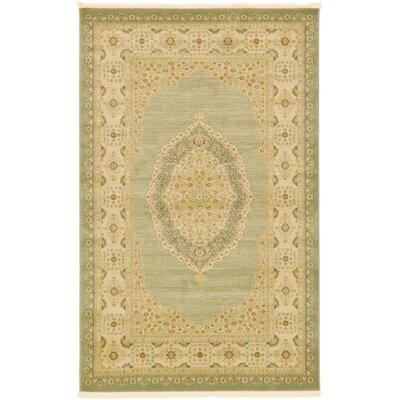 Fonciere Light Green Area Rug Rug Size: 5 x 8