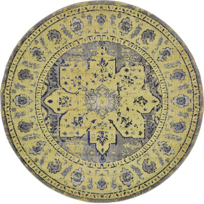 Killington Gray Area Rug Rug Size: Round 8