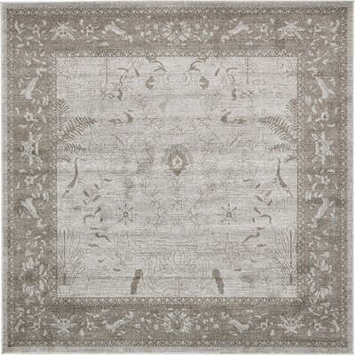 Shailene Light Gray Area Rug Rug Size: Square 8