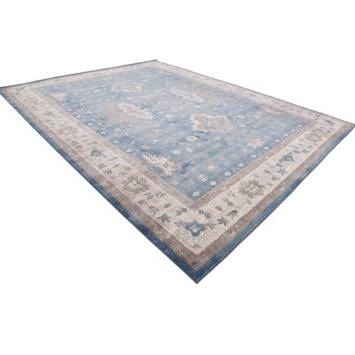 Kerensa�Light Blue Area Rug Rug Size: Rectangle 10 x 13