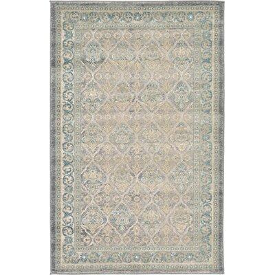 Kerensa Grey & Silver Area Rug Rug Size: 33 x 53
