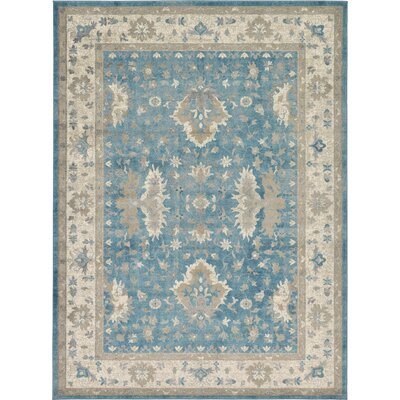 Kerensa�Light Blue Area Rug Rug Size: 8 x 11