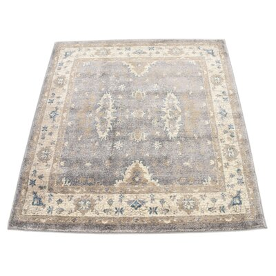 Jaiden Gray Area Rug Rug Size: Square 4