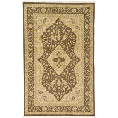 Normanson Brown Area Rug Rug Size: Rectangle 5' x 8'