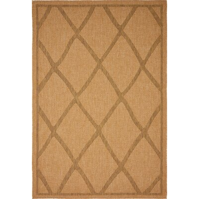 Acres Light Brown Outdoor Area Rug Rug Size: Rectangle 6 x 9