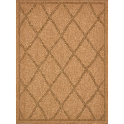Acres Light Brown Outdoor Area Rug Rug Size: 9 x 12