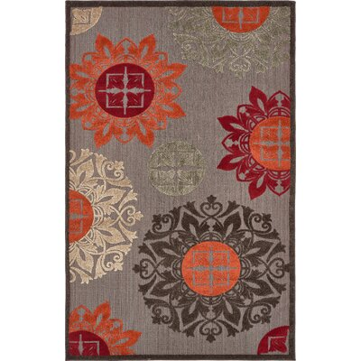 Jessica Brown Indoor/Outdoor Area Rug Rug Size: 5 x 8