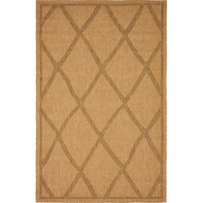 Acres Light Brown Outdoor Area Rug Rug Size: 5 x 8