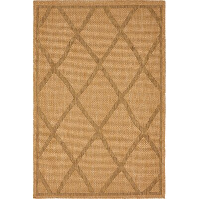 Acres Light Brown Outdoor Area Rug Rug Size: 4 x 6