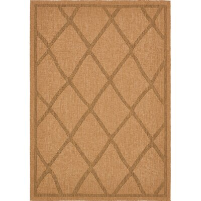Acres Light Brown Outdoor Area Rug Rug Size: Rectangle 8 x 114