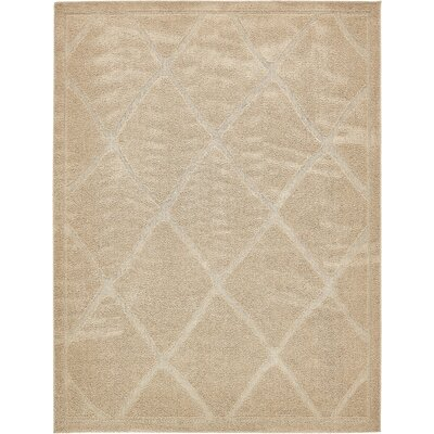 Catherine Machine Woven Beige Area Rug Rug Size: Rectangle 9 x 12