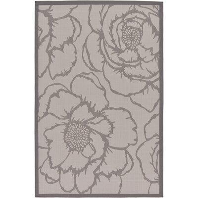Amelia Gray Outdoor Area Rug Rug Size: Rectangle 53 x 8