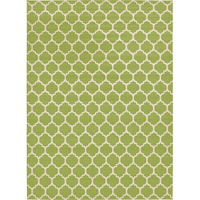 Emjay Light Green Area Rug Rug Size: 13 x 18