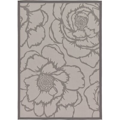 Amelia Gray Outdoor Area Rug Rug Size: Rectangle 53 x 8