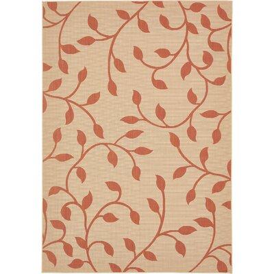 Nesbitt Beige/Terracotta Outdoor Area Rug Rug Size: Rectangle 8 x 11