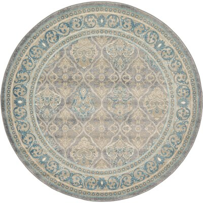 Kerensa Grey & Silver Area Rug Rug Size: Round 6