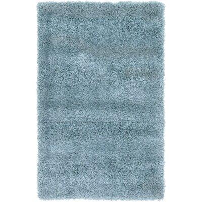 Evelyn Light Blue Area Rug Rug Size: 33 x 53