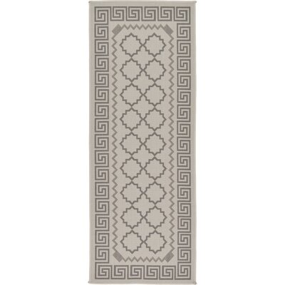 Hancock Gray Outdoor Area Rug Rug Size: Runner 22 x 6