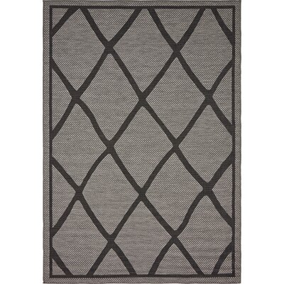 Bradley Gray Outdoor Area Rug Rug Size: 6 x 9