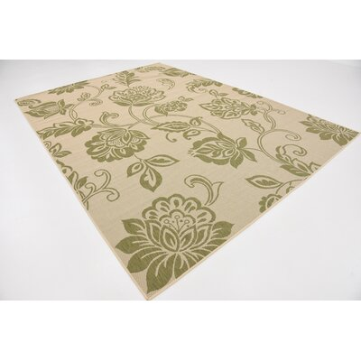 Malinda Light Green Outdoor Area Rug Rug Size: Rectangle 6 x 9