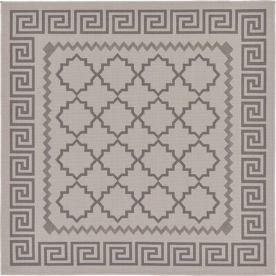 Hancock Gray Outdoor Area Rug Rug Size: Square 6