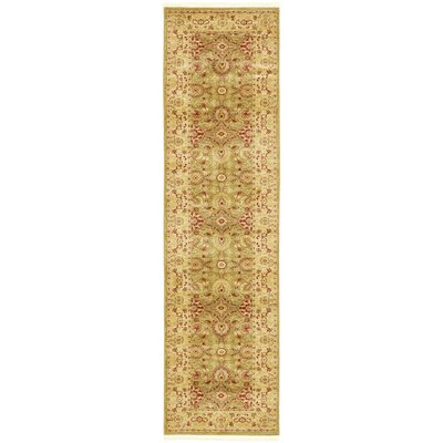 Sebou Light Green Area Rug Rug Size: Runner 27 x 10