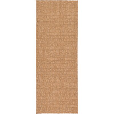 Dresden Light Brown Outdoor Area Rug Rug Size: Runner 22 x 6