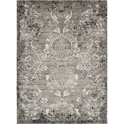 Christine Light Gray Indoor/Outdoor Area Rug Rug Size: Rectangle 9 x 12
