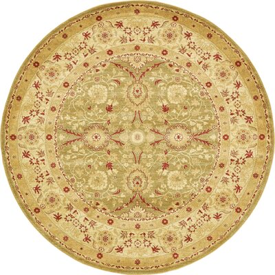 Sebou Light Green Area Rug Rug Size: Round 6