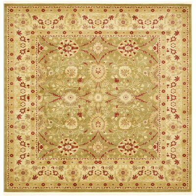Sebou Light Green Area Rug Rug Size: Square 8