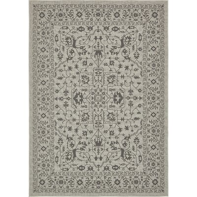 Appletree Light Gray Outdoor Area Rug Rug Size: Rectangle 6 x 9