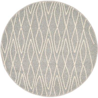 Doretha Gray Area Rug Rug Size: Round 33