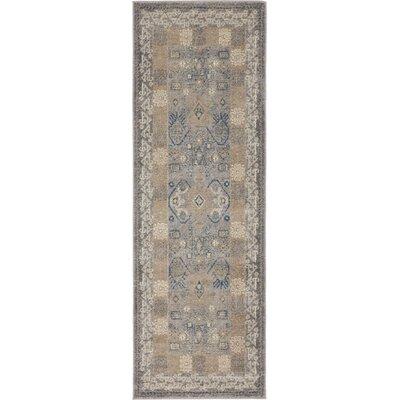 Jaiden Oriental Gray Area Rug Rug Size: Runner 2 x 6