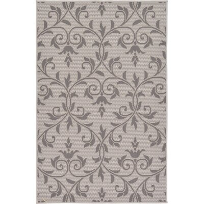 Monique Gray Outdoor Area Rug Rug Size: Rectangle 33 x 5