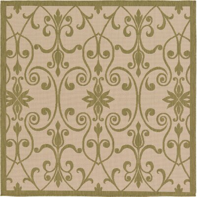 Bayridge Light Green Outdoor Area Rug Rug Size: Square 6