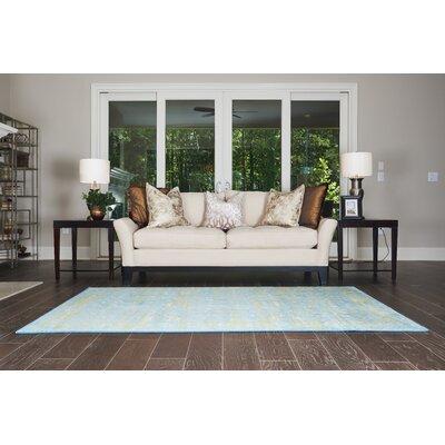 Yareli Turquoise/Green Area Rug Rug Size: 4 x 6