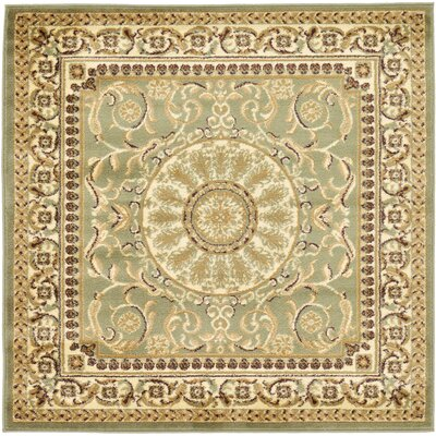 Oskar Light Green Area Rug Rug Size: Square 4