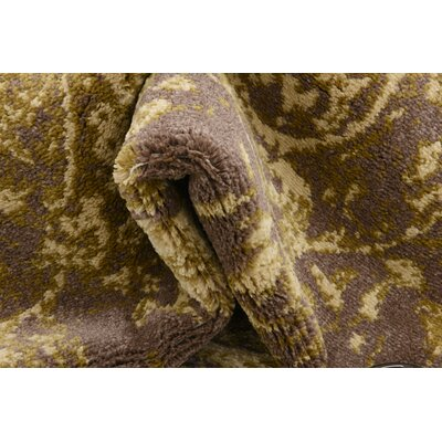 Ronin Brown Area Rug Rug Size: 4 x 6
