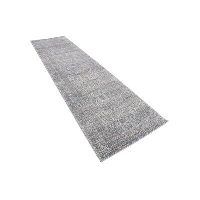 Delit Gray Area Rug Rug Size: Runner 27 x 10
