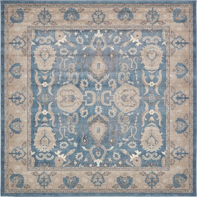 Jaiden Blue / Brown Area Rug Rug Size: Square 8