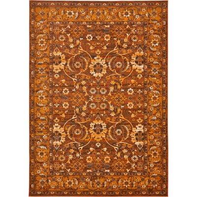 Bolton Orange/Brown Area Rug Rug Size: 7 x 10