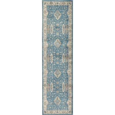 Kerensa�Light Blue Area Rug Rug Size: Runner 27 x 10