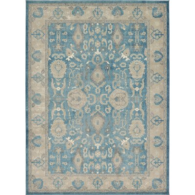 Jaiden Blue / Brown Area Rug Rug Size: 8 x 11