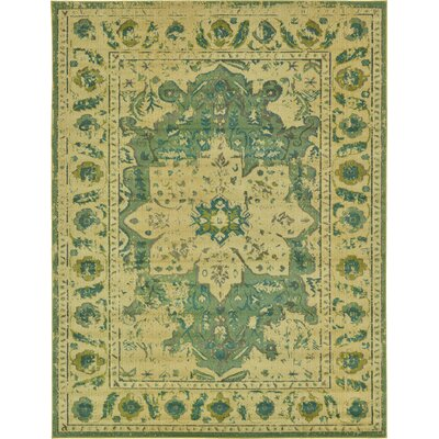 Killington Green Area Rug Rug Size: 9 x 12