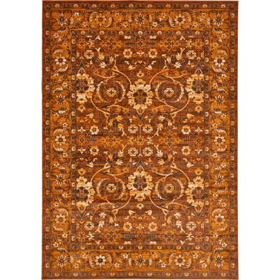 Bolton Orange/Brown Area Rug Rug Size: Rectangle 2 x 3