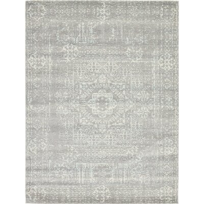 Delit Gray Area Rug Rug Size: 9 x 12